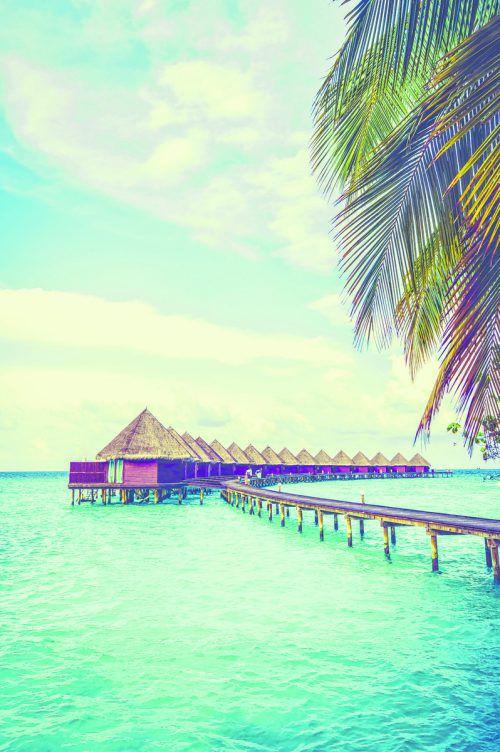 Die Malediven sind bekannt für die wunderschönen Hotelanlagen, die sich oft auf dem Wasser befinden. shutterstock