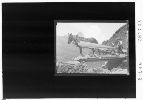 Holztransport im Gebirge.