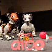 Sonys Roboterhund soll Familienmitglieder überwachen
