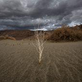 Was Kohlendioxid schon alles angestellt hat