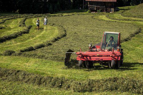 Was wäre Vorarlberg ohne seine Bäuerinnen und Bauern, ohne Alpwirtschaft, ohne Kühe und ohne den Tourismus?Bäuerinnen Kleinwalsertal Tourismus/Oliver Farys