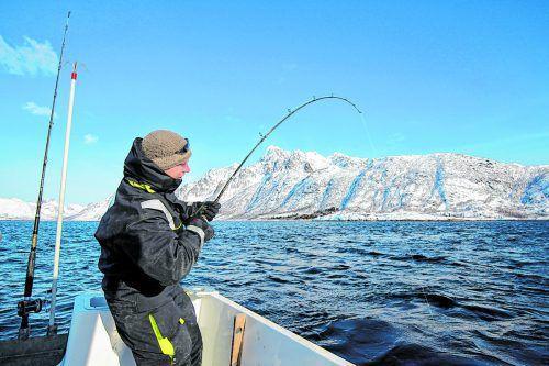 Winterangeln ist bei den Norwegern sehr beliebt. media-army.de/visitnorway.com