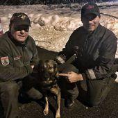 Zoll-Hund entlarvt Drogenschmuggler