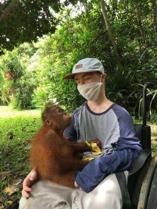 Neugierig schaut der kleine Orang-Utan Mona vom Rettungszentrum Kalimantan zu Benni Over auf. K. Over