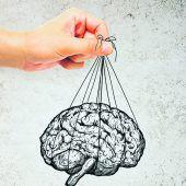 Ursprung der Intelligenz