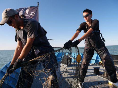 Aktivisten durchkämmen täglich das Meer auf der Suche nach Treibnetzen. AP