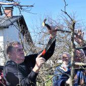 Obstbaumbesitzern den richtigen Schnitt gezeigt