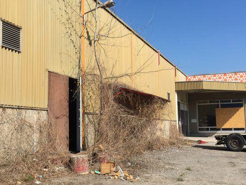 Das leer stehende Gebäude des Heimwerkermarktes Baumarkt in Dornbirn soll bald verschwinden. Geplant ist ein neuer Mömax-Markt.VN/Schuster
