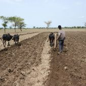 Film und Diskussion über Landraub