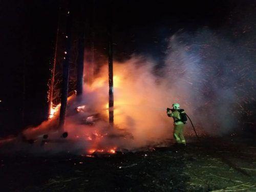 Die Feuerwehr hatte bei starkem Wind mit dem brennenden Funken zu kämpfen. Die Polizei sucht nach den Zünslern. feuerwehr Höchst