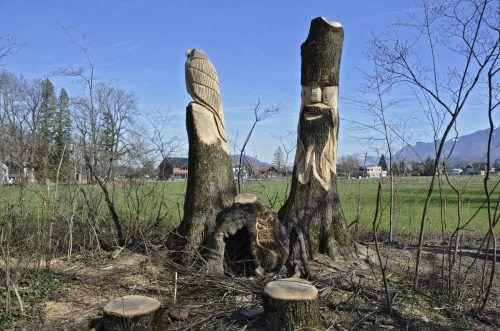 Die Stämme gefällter Eschen wurden in Meiningen künstlerisch gestaltet. Auch Sitzgelegenheiten wurden geschaffen. Die Bäume waren vom Eschentriebsterben befallen. Gemeinde