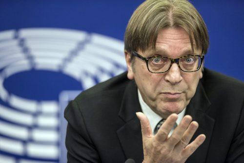 """EU-Brexit-Beauftragter Guy Verhofstadt: """"Ich bleibe optimistisch."""" Ap"""
