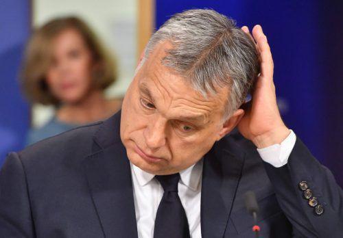Experten sollen entscheiden, ob Orbans Partei wieder EVP-Mitglied sein kann. AFP