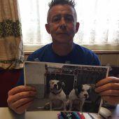 Nach Hundeattacke in Höchst: Besitzer kämpft um seine Dogge