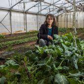Bürgerrat zur Landwirtschaft