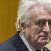 Lebenslang für Karadzic