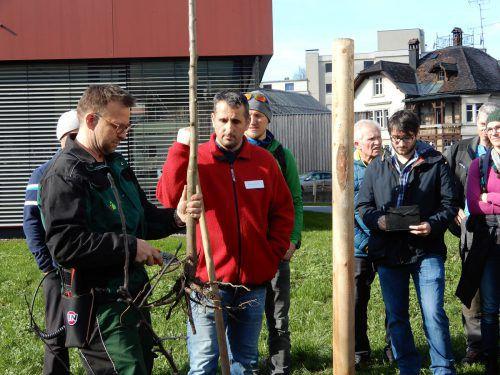 Zahlreiche Teilnehmer ließen sich Tipps zur Obstbaumpflege geben. cth