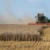 Getreideernte deckt Weltverbrauch nicht