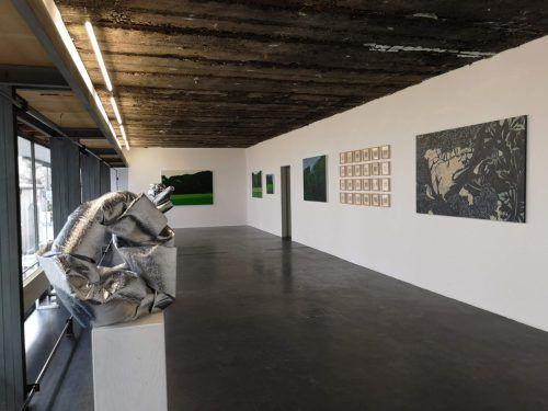 Arbeiten von Debora Hirsch, Valentina D'Amaro und Devis Venturelli in der Galerie Lisi HämmerleSorko