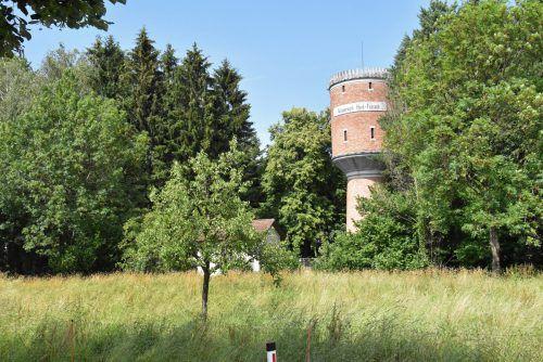 Das Wäldchen beim einstigen Wasserwerk an der Lerchenmühlstraße in Hard könnte sich für das Naturhaus eignen. ajk