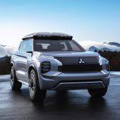 Zukunft mit SUV und Plug-in