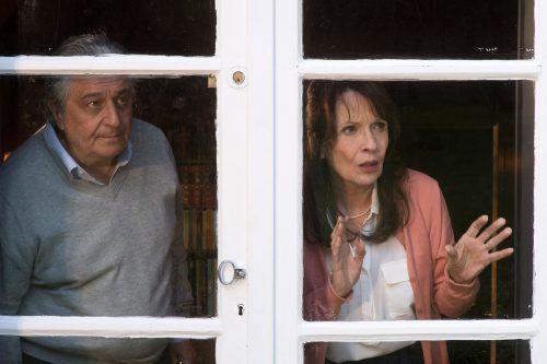 """Der Film """"Monsieur Claude 2 - Immer für eine Überraschung gut"""" will an den Erfolg des ersten Teils """"Monsieur Claude und seine Töchter"""" anknüpfen. Filmladen"""