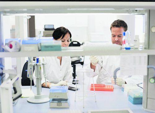 Der Life-Science-Sektor entwickelt sich dynamisch. VIVIT betreibt dazu Forschung auf Weltklasseniveau.Prisma