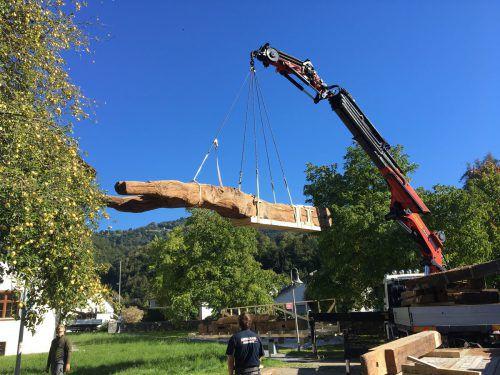Der Torkelbaum wird im Pavillon Stück für Stück zusammengesetzt.M. Mäser