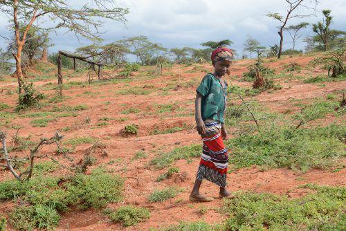 Die neunjährige Hiwot geht täglich stundenlang zu Fuß zur Schule – und das oft mit leerem Magen.