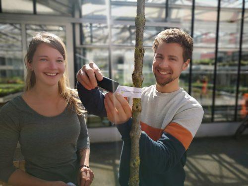 Die Stadtgärtnerei Bregenz hat die Gewinner gezogen.