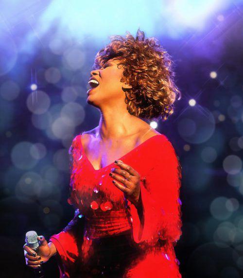 Dieses Jahr feiert Tina Turner ihren 80. Geburtstag. Veranstalter