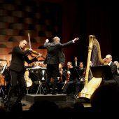 Meisterkonzerte sollen Publikumsmagnete bleiben