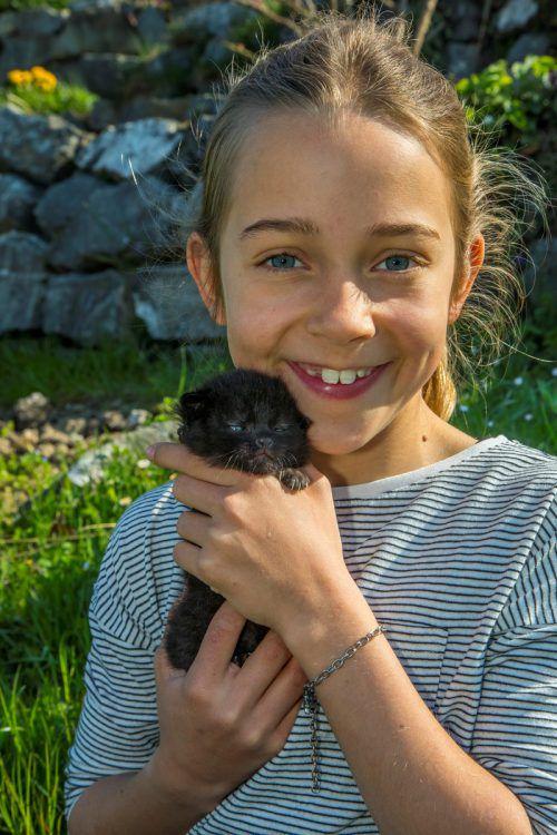 Ein Zufall führte die beiden zusammen: Teresa hat das Katzenbaby vor ein paar Tagen aus einem Strohhaufen gerettet. VN/Paulitsch