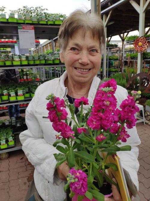 Ich will gerade eine Levkoje kaufen. Genommen habe ich sie, weil sie so selten ist. Sobald es in der Nacht etwas wärmer ist, setze ich sie in meinen Garten. Außerdem habe ich einige Samen und ein Gartenbuch gefunden. In meinem Garten sind hauptsächlich ganzjährige Pflanzen, die gerade zu blühen angefangen haben. Derzeit stehen Akelei, Tulpen, Osterglocken und Primeln sowie Vergissmeinnicht in Blüte. Mein Garten ist nicht groß, dafür ist er bunt und riecht gut. Bald schon kann ich mit dem Rasenmäher wieder ein Herz aus Gänseblümchen formen. Ich bin froh, dass ich wieder in den Garten kann. Vergangenes Jahr hatte ich eine Herz-OP, und da war der Garten für mich tabu. Anni Sailer, Hörbranz