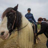 Vom Rollstuhl in den Pferdesattel