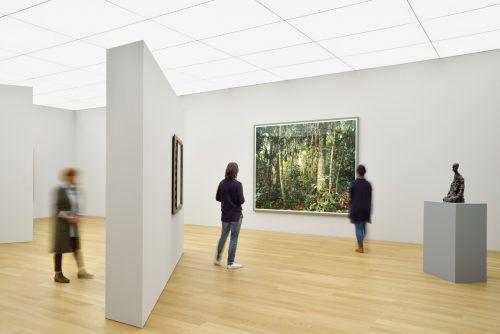 """""""Paradise 30, Rio Madre de Dios"""" von Thomas Struth (2005) und die Büste eines Mannes von Giacometti (1964/65). museum/Agostinelli"""