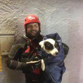 Hund Balu und Camper aus Notlage gerettet