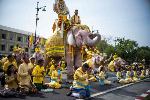 Bei der Zeremonie fielen die Dickhäuter für den neuen König auf die Knie. AFP