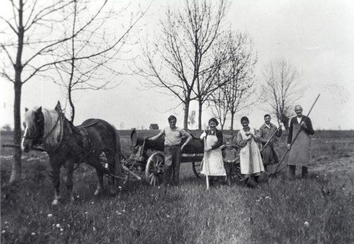 Berichte über frühere Zeiten in der Höchster Landwirtschaft.GEmeinde höchst