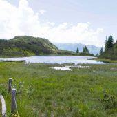 25.000 Hektar Schutzgebiete