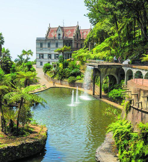 Die größte Pflanzenvielfalt Madeiras findet man im botanischen Garten der Hauptstadt Funchal. shutterstock (5)