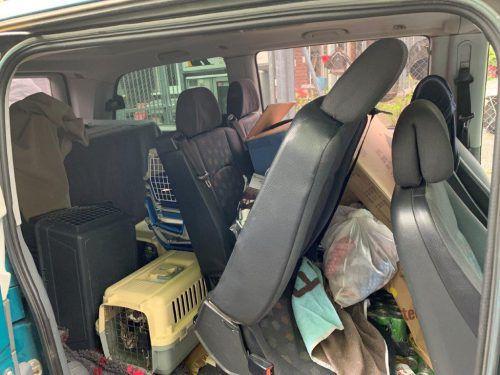 Die Käfige wurden regelrecht in die Transporter hineingezwängt.