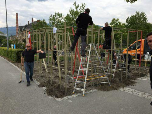 Die Stadt Bregenz entschied sich zum Abbau des 70.000 Euro teuren Kunstwerks. Rauch