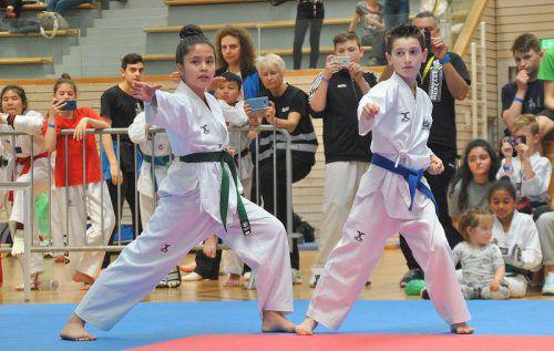 Die Veranstaltung soll Lust auf Taekwondo machen. verein