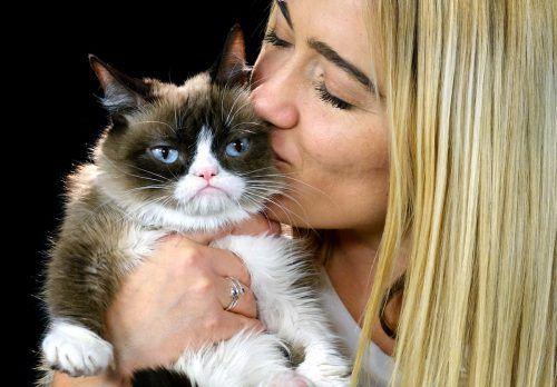 """Ein genetisch bedingter kleiner Unterbiss verlieh """"Grumpy Cat"""" ihr Aussehen. Ap"""