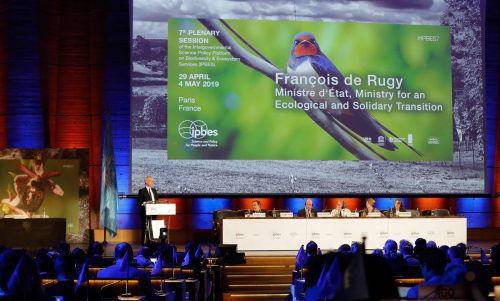 Ein Papier mit Kernaussagen zur globalen Artenvielfalt ist am Samstag bei einer Weltkonferenz in Paris von allen Mitgliedsstaaten unterzeichnet worden. AFP