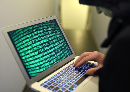 Gestohlene Log-in-Daten sind aufgetaucht, auch Politiker sind betroffen.APA