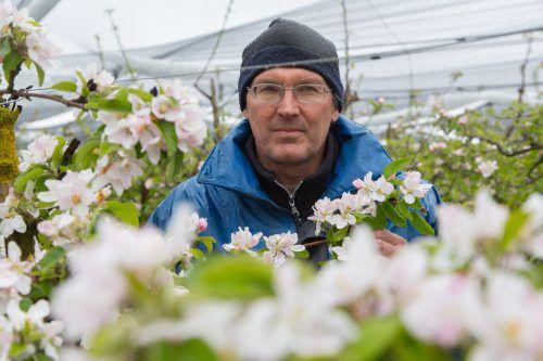 Jens Blum im Wintergewand auf seinem Obstfeld vor zwei Jahren. Damals vernichtete der Frost nahezu alles. Dieses Mal kam es nicht so weit .HOF