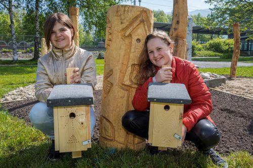 Sherin Fechtig (12) und Liza Elekes (11) präsentieren ihre Nisthilfen vor dem Artenvielfaltskompass am Lochauer Hafen. VN/Paulitsch