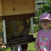 Hunderte wollten mehr über Bienen erfahren